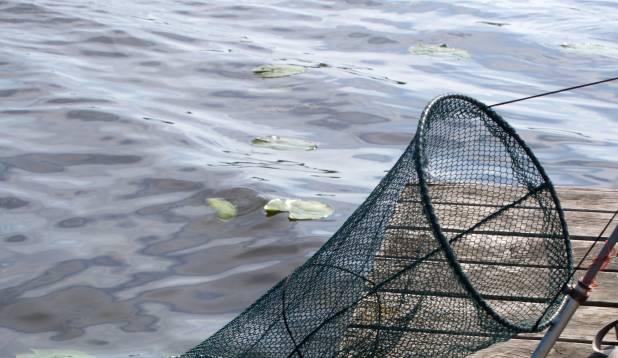 VÄRSKEM KALA. Sump on hea selleks, et püütud kalasid saab hoida püügi lõpuni elus ja soovi korral ülearused kalad vette tagasi lasta. Foto: Gert Kiiler.