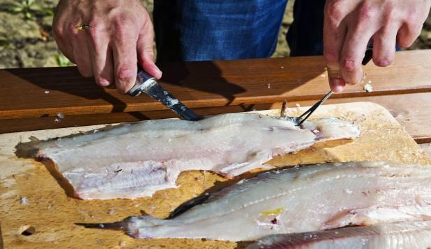 5. Eemalda fileedelt nahk. Hoia kala saba poolsest otsast fileerimiskahvliga laua küljes kinni. Nuga tuleks hoida võimalikult naha ligidal, suunaga kahvlist eemale, ja sujuvate pikkade lõigetega nahk eemaldada. Foto: Aivar Kullamaa.