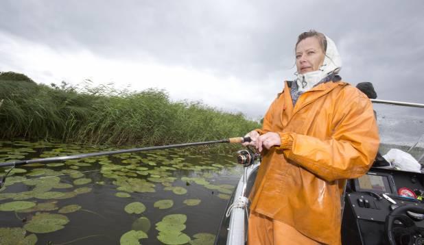 TAASKASUTUS. Raivo vana, 1980. aastal püütud haugidest jäänud plekkidega kalameheülikond leidis aastakümneid hiljem taas rakendust. Foto: Aivar Kullamaa.