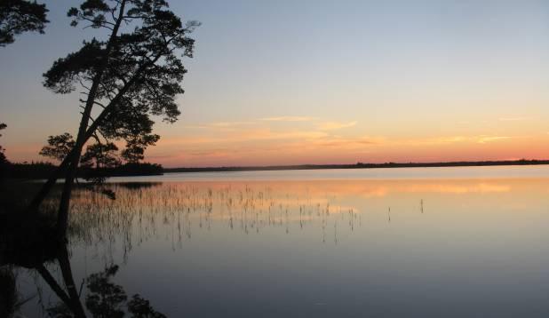 TÄNAVJÄRV. Tänavjärv on keset raba paiknev liivakallastega järv, mis asub Harjumaal Padise vallas Hatu külas. Foto: Anu Palm.