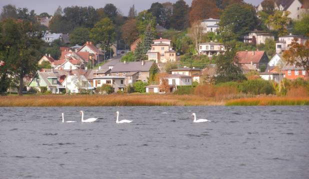 """Perekond Luik """"Luikede järvel""""."""