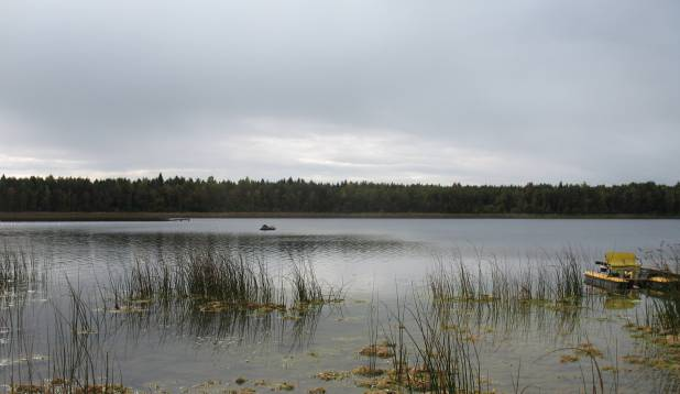 Vaade Väinjärvele. Foto: Anu Palm.