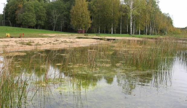 SELGE PILT. Väinjärve vesi paistab silma oma hea läbipaistvusega. Foto: Anu Palm.