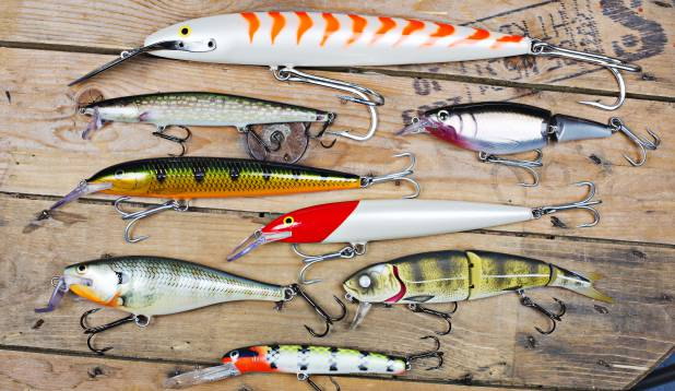 Vooblerid firmalt Rapala ja Westin – Super Shad Rap, Jointed Shad Rap ja Magnum, Westinilt Deep Runner, suur voobler suure kala jaoks. Foto: Aivar Kullamaa.