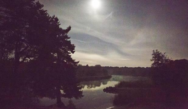 JÕGI PEOPESAL. Kuuvalgel ööl oli vaade Pirita jõele hea ka ilma öövaatlusseadmeta. Foto: Aivar Kullamaa.