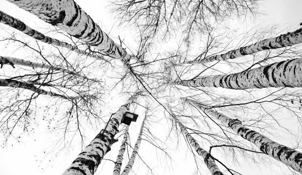Hilissügis Emajõe ääres. Foto: Aivar Kullamaa.
