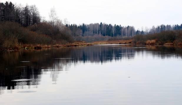 Mingil ajahetkel kees kogu jõgi pinnas askeldavatest peenkaladest .