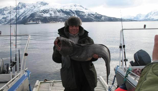 18,6 kg hirmsat elukat.
