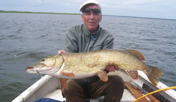 8 kilo seda vürtsi, mida kalamees alateadvuses igalt retkelt salamisi ootab.