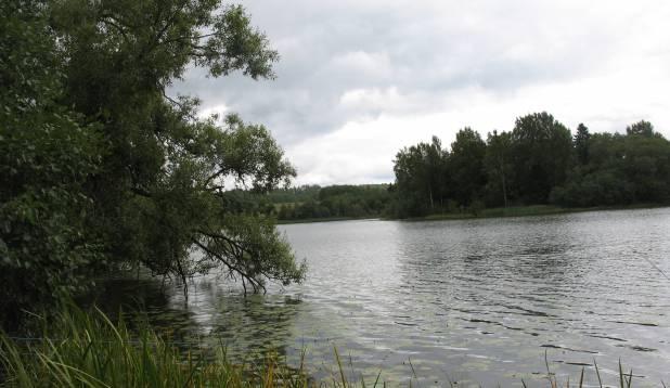 Vaade Kaarna järvele. Foto: Anu Palm.