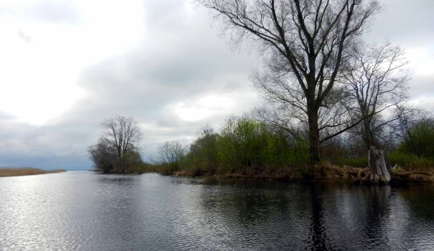 Tänassilma jõgi