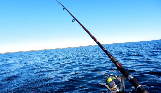 Ahvenaõng MEETRISE kala püügiks  :))
