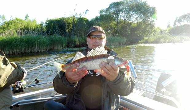 Maksimi elu esimene koha-kala.