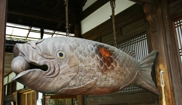 Kala on budistidele ärkveloleku sümboliks. Kalakujuline trumm budistlikus templis. Foto: Wikipedia.