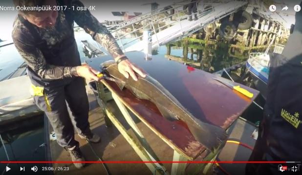 VIDEO: Norra ookeanipüük 2017. I osa