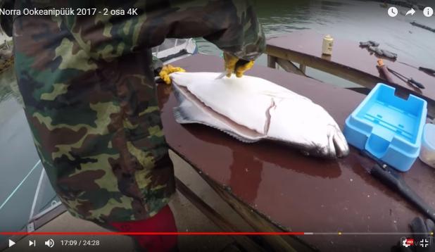 VIDEO: Norra ookeanipüük 2017. II osa