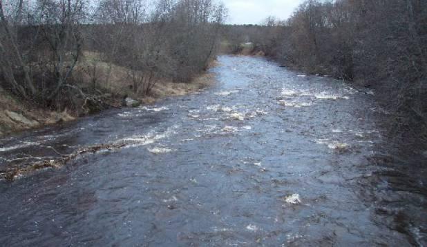 Jaanuar2007