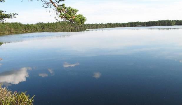 tudu järv