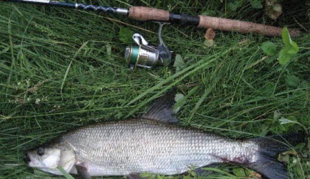 Kala mida varem pole saanud!