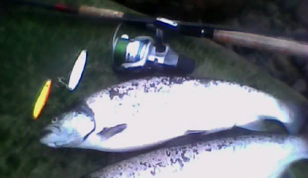neljapäev on kalapäev:))
