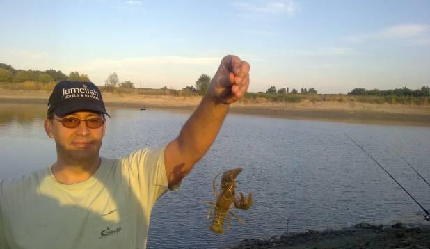 Lobster :-)