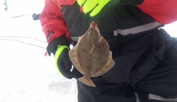 Selline kala siis Pärnu lahest
