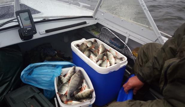 Peipsil kala tuleb