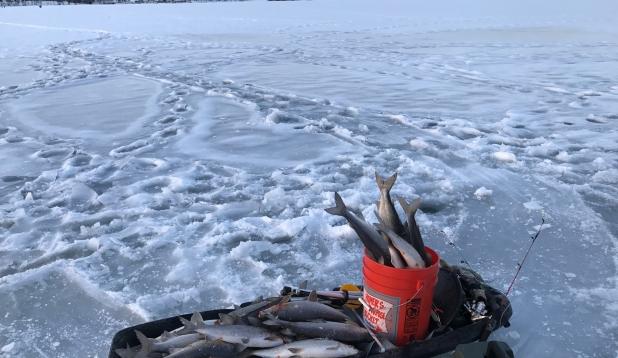 Ice Fishing /Siig