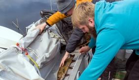 Avapidu Võrstjärve haugidega , mis tõi ka ühtlasi võidu - Jõesuu karikas 2018