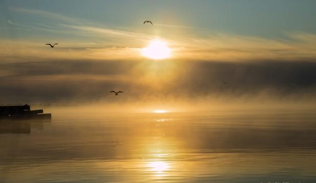 Ühe imelise päeva hommik Saaremaal !