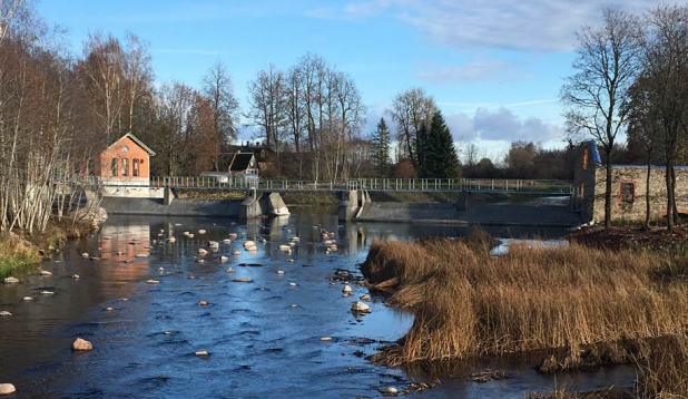 Jändja kalapääs Pärnu jõel on looduslikku tüüpi, tagades kaladele hea läbipääsu. Foto: Elina Leiner.